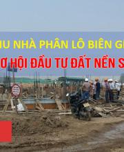 Vũ Văn Nhân - phân phối dự án đất nền
