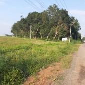 Lô đất Huyện Chơn Thành - Bình Phước, 2000m2 giá 600 triệu, sổ riêng, chính chủ cần bán gấp để trả nợ ngân hàng