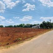 Chính chủ bán đất mặt tiền đường nhưa lớn, sổ riêng, thổ cư, kết nối trực tiếp Sân bay Long Thành