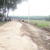 Đất chính chủ em cần bán gấp. Diện tích 250m2, nằm tại Huyện Chơn Thành - Bình Phước.  giá rẻ pháp lý rõ ràng, công chứng ngay