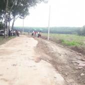 Còn lô đất nằm cạnh trường học diện tích 200m2 có thổ cư
