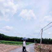 Bán đất Tây Ninh Chính Chủ - Có sổ hồng, Giá cực tốt