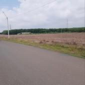 Đất vành đai Khu CN Becamex Chơn Thành đường nhựa sẵn giá  1 tỷ 1