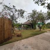 Bán Nền Biệt Thự Phía Núi Suối Mây Huyện Phú Quốc, Tỉnh Kiên Giang