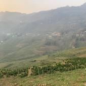 Bán đất 600m2 Sapa giá rẻ, view thung lũng Mường Hoa cực đẹp